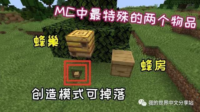 《我的世界》java版特殊的蜂巢与蜂箱